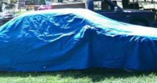 Everything You Want to Know About Car Covers