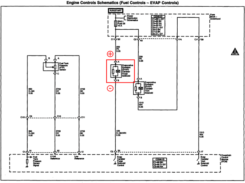 Canister purge valve wiring diagram
