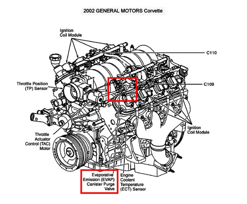 Location of the canister purge valve on a 2002 Chevrolet Corvette