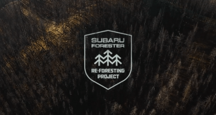 Subaru Helps Replant Trees